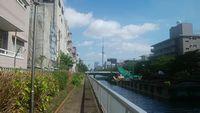 大横川からスカイツリー